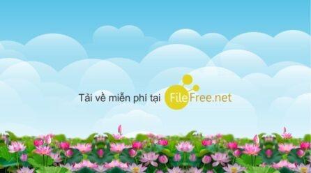 TẢI FILE COREL BACKGROUND HOA SEN NỀN TRỜI FREE